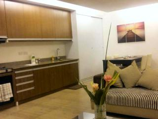 Davao Apartment Rentals Studio Apt. B1 - Davao vacation rentals