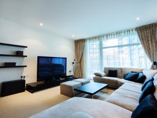 Chelsea Bridge Wharf - London vacation rentals