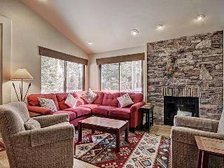 Park Forest 597 - Shuttle to Lifts/Town - Breckenridge vacation rentals