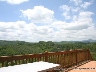 SUMMER SAVINGS*Cabin at River*HotTub*PoolTbl*View - Fleetwood vacation rentals