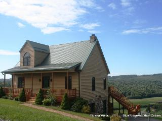 Sunny Family Cabin Near River*HotTub*PoolTble*View - Fleetwood vacation rentals