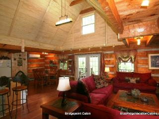 Nice House with Internet Access and A/C - Banner Elk vacation rentals