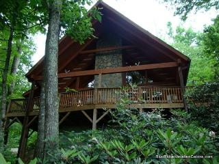 Cozy Private Valle Crucis Log Cabin*Firepit*HotTub - Valle Crucis vacation rentals