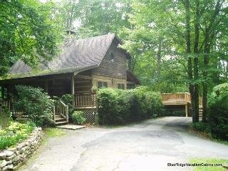 Cozy Log Cabin Near ASU & River*Hot Tub*Firepit - Valle Crucis vacation rentals