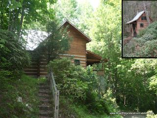 2 LOG CABINS 1 LOW PRICE*HotTub*Creek*Firepit*AC - Valle Crucis vacation rentals