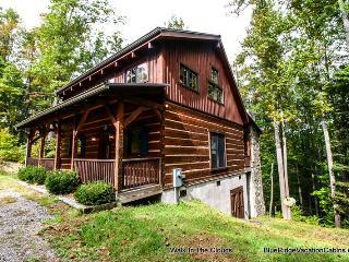 Custom Cabin Min to Hebron Falls & ASU*Hot Tub*AC - Boone vacation rentals