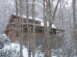 Cozy 3 bedroom House in Valle Crucis - Valle Crucis vacation rentals