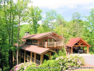 Red Stag Lodge @ Eagles Nest*Hot Tub*Huge Gameroom - Banner Elk vacation rentals