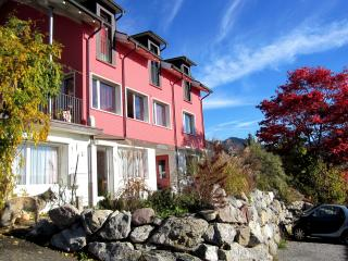1 bedroom Apartment with Internet Access in Wald - Wald vacation rentals