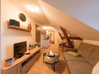 Cozy 2 bedroom Condo in Mühlhausen - Mühlhausen vacation rentals