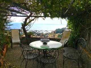 Villa Mezzomonte Apartment with terrace and view! - Capri vacation rentals