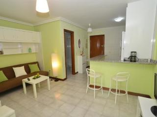 Apartment in Isla, Cantabria 102812 - Noja vacation rentals