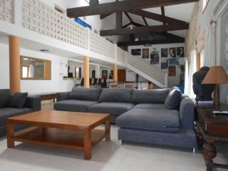 vaste propriété dans les corbieres ,10mn de la mer - Portel-des-Corbieres vacation rentals