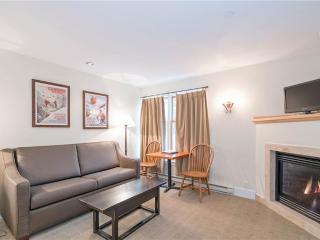Cozy 1 bedroom Telluride Condo with Internet Access - Telluride vacation rentals