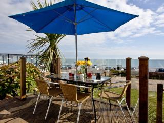 The Beach House located in Paignton, Devon - Paignton vacation rentals