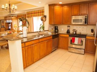 Perfect Condo with Internet Access and Television - Reunion vacation rentals