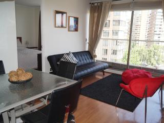 Beautiful Condo with Internet Access and Satellite Or Cable TV - Santiago vacation rentals