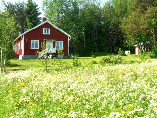 Countryside living/Stenmarks lantboende - Skellefteå vacation rentals