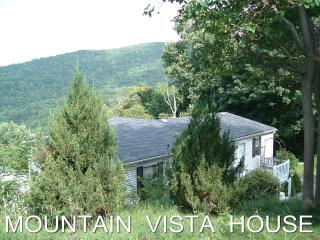 Banner Elk Mountain Vista House with WiFi + Sauna - Banner Elk vacation rentals