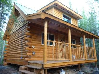 1 bedroom Cottage with Balcony in Fairbanks - Fairbanks vacation rentals