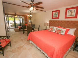 Sea Fan Studio at Sapphire Beach - Saint Thomas vacation rentals