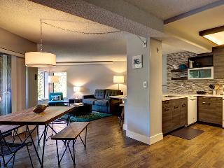 Charming House with Internet Access and Hot Tub - Breckenridge vacation rentals