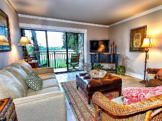 Vista Verde - Hilton Head vacation rentals