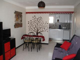 Charmant T2 avec loggia et parking - Collioure vacation rentals