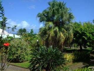 Nice Bungalow with Internet Access and A/C - Goyave vacation rentals