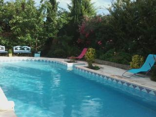 4 bedroom Villa with Internet Access in Nezignan l'Eveque - Nezignan l'Eveque vacation rentals