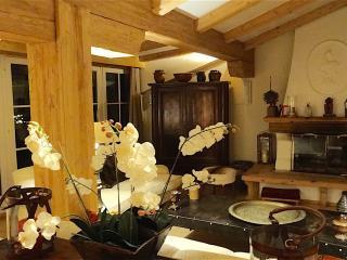 Kitzbühel, Austria, World-renowned Ski-Resort 3 BR Condo - Kitzbühel vacation rentals