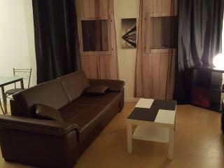 charmant studio proche versailles - Montigny-le-Bretonneux vacation rentals