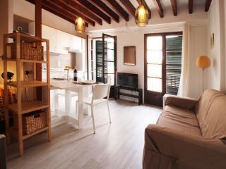 Modern studio in Argenteria street 4 - Palma de Mallorca vacation rentals