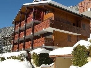 Romantic 1 bedroom Condo in La Clusaz with Short Breaks Allowed - La Clusaz vacation rentals