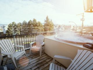 Mountain View Apartment with Hot Tub - Vancouver vacation rentals