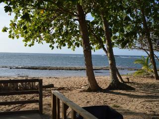Oceanfront Penthouse, 3 Bedrooms, Access Pools - Vega Baja vacation rentals