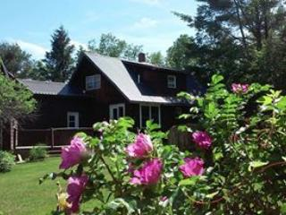Memory Lane Vacations ~ Four seasons in Western ME - Andover vacation rentals