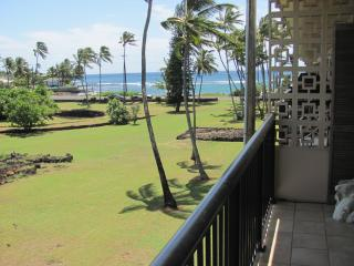 Sunny 1 bedroom Poipu Apartment with Water Views - Poipu vacation rentals
