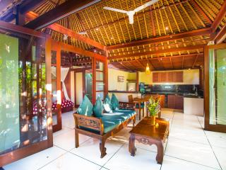 LUXURY Villa Jantung Million $ Views ONLY $99! - Lodtunduh vacation rentals