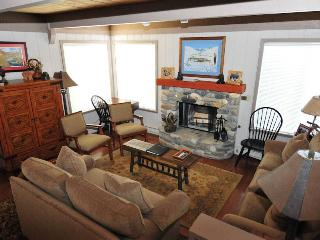 Nice Condo with Deck and Internet Access - Sun Valley vacation rentals