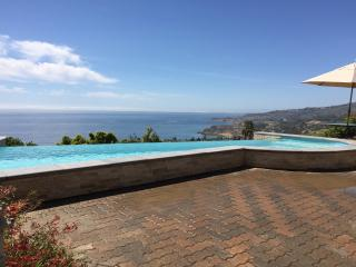 Gorgeous 4 bedroom House in Rancho Palos Verdes - Rancho Palos Verdes vacation rentals
