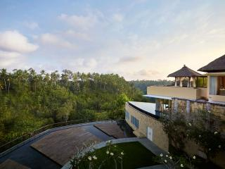 Luxury 3 Bedroom Pool Villa at Ubud, Bali with a breathtaking valley view - Ubud vacation rentals