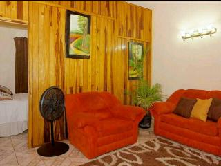 1 bedroom Apartment with Television in Kingston - Kingston vacation rentals