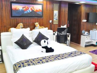 Penthouse Suite in Central Thamel - Kathmandu vacation rentals