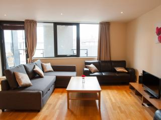 Superior Large two bed apartment - London vacation rentals