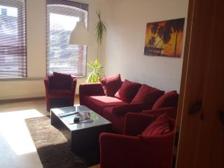 Cozy 2 bedroom Condo in Kiel - Kiel vacation rentals