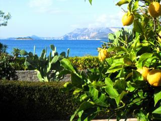 Beach House Cavtat - Sea View Room 2 - Cavtat vacation rentals