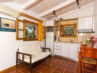 Liuba Houses - Green Two Bedroom House - Vasilikos vacation rentals