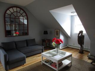 Spacious Loft Style Apartment on the Green - Strafford vacation rentals