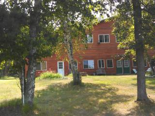 Nice Condo with Television and Central Heating - Crosslake vacation rentals